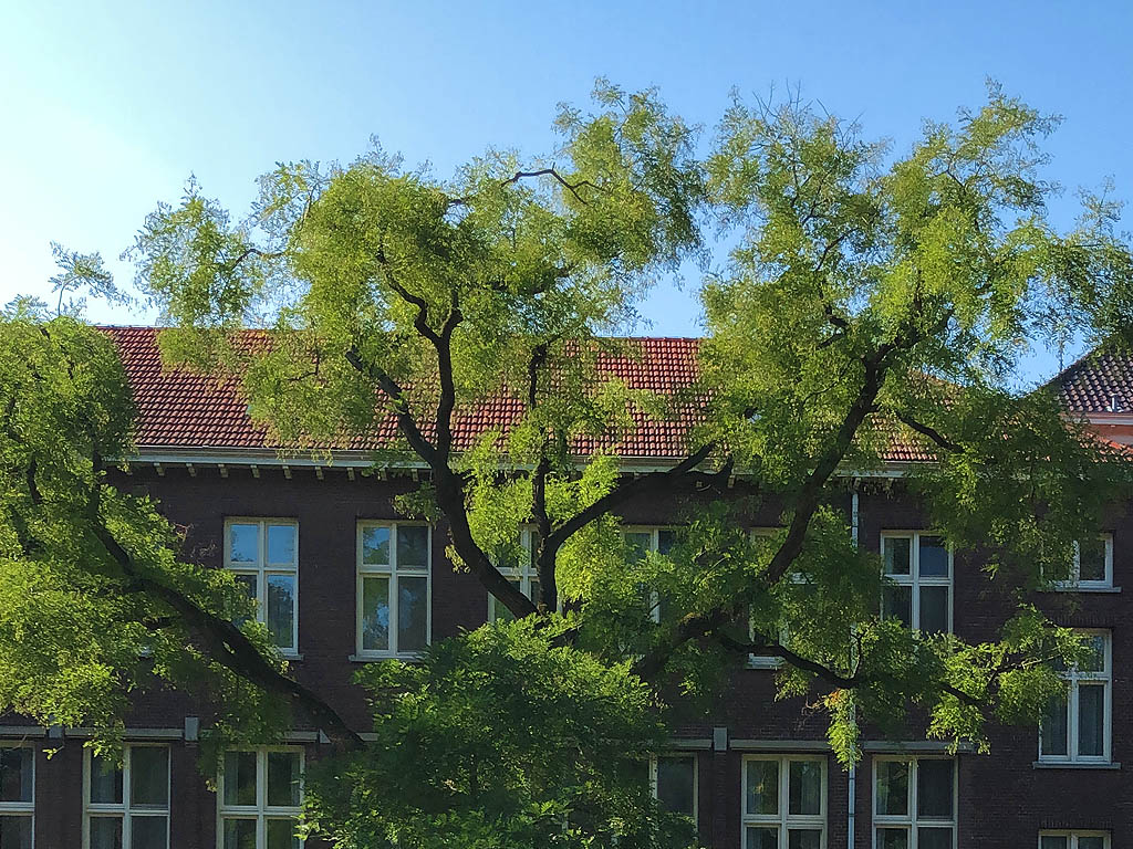 VTA-controle Sint-Oedenrode
