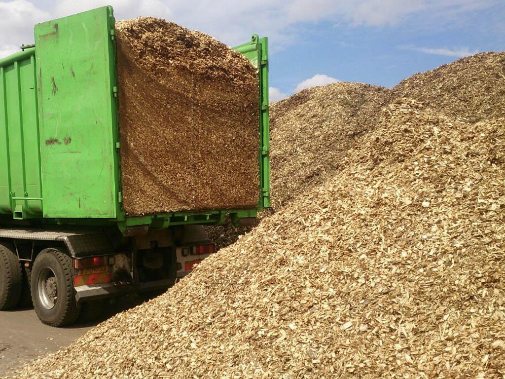Rondhout / Biomassa